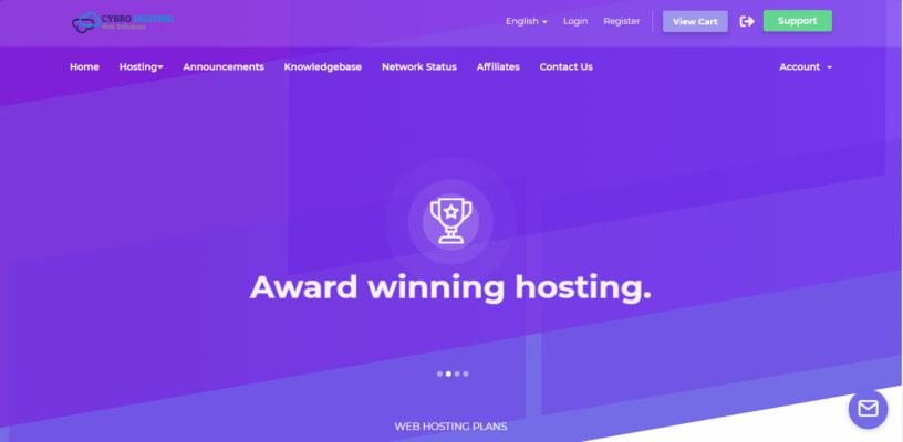 web-hosting-domain-names-big-2