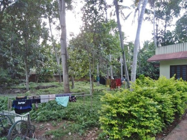 house-and-land-for-sale-in-neyyattinkara-big-2