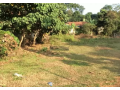 4355-sq-ft-plot-for-sale-in-pampady-kottayam-small-0