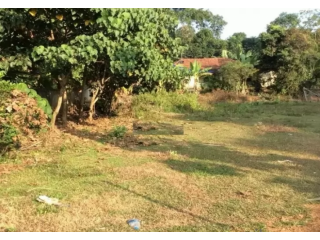 4355 Sq. ft Plot for Sale in Pampady, Kottayam