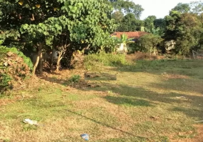 4355-sq-ft-plot-for-sale-in-pampady-kottayam-big-0