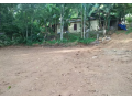 10-sq-ft-plot-for-sale-in-pampady-small-0