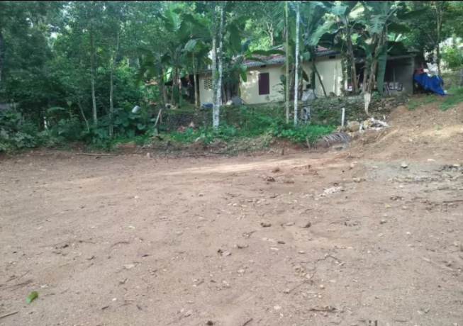 10-sq-ft-plot-for-sale-in-pampady-big-0