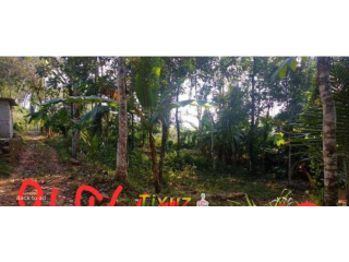 12 cent land for sale in Kottayam Pampady