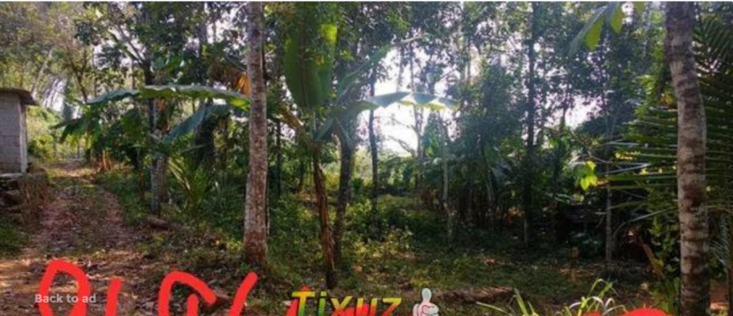 12-cent-land-for-sale-in-kottayam-pampady-big-0