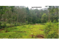 kothala-nh-220-land-for-sale-in-pampady-small-3