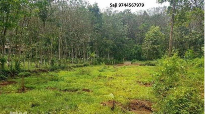 kothala-nh-220-land-for-sale-in-pampady-big-3