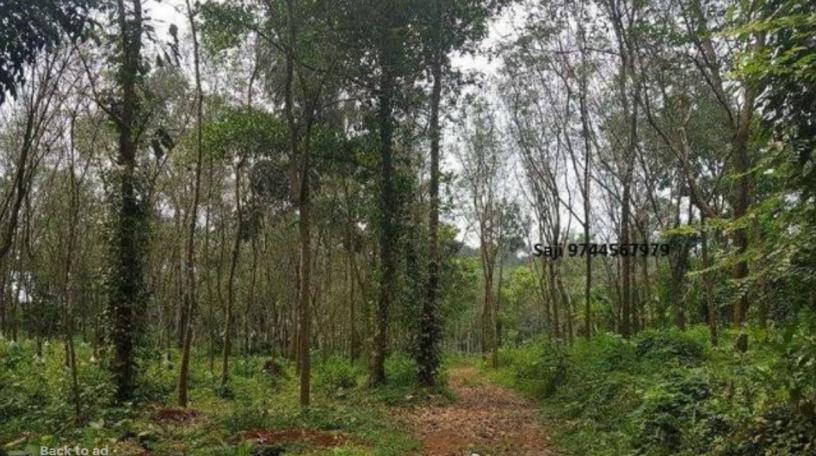 kothala-nh-220-land-for-sale-in-pampady-big-0